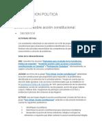 CONSTITUCION POLITICA ACT 8