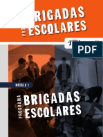 modulo1_programa_brigadas