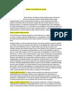 ORIGEN Y EVOLUCION DE LAS CELULAS.