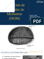 Exp DGM.pptx