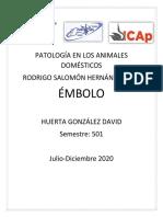 ÉMBOLO.pdf
