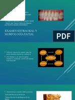 Examen extraoral y morfología facial