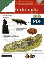 Andaluc_237_a_Volumen_1_-_Campos_J_M.pdf