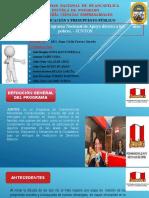 PROGRAMA JUNTOS.pptx