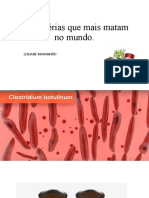 Doencas Bacterias.pptx