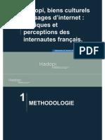 Hadopi Etude T0 - Biens culturels et usages d'Internet
