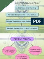 Peringkat perkembangan fizikal (prenatal, Bayi, kanak2 & Remaja)