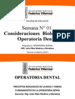 BIOLOGIA DE LA PULPA DENTAL Y LOS TEJIDOS PERIRRADICULARESPresentación1
