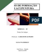 APOSTILA DO CURSO DE ACUPUNTURA - 05