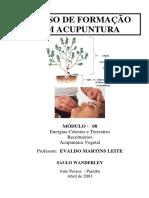 APOSTILA DO CURSO DE ACUPUNTURA - 08