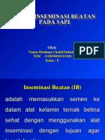 POWER-POINT-Maulana-Chafid-Sukma.ppt