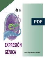 Regulación de la expresión génica V2 NOTES.pdf