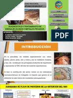 DIAGNOSTICO Y TRATAMIENTO DE DRENAJES ÁCIDOS Y METALES PESADOS.pdf