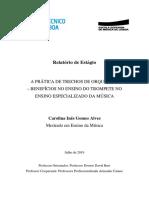 Relatório de Investigação - Final com correções Carolina Alves.pdf