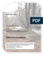 DEC -- Gas Drilling in State Forests, Exec. Summary