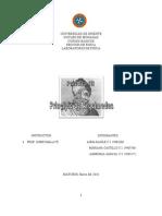 INFORME III SOBRE EL PRINCIPIO DE ARQUÍMEDES