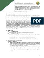 DETERMINAR CAUDALES (1).docx