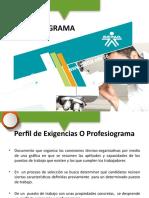 8. Perfil de exigencias o profesiograma