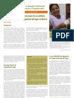 derechos-trabajadoras-del-hogar-Bolivia-WIEGO-PB17 Castano_Tierno-políticas-