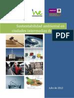 Reporte_Ciudades sustentables_Aguascalientes
