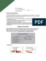 GUIA-Nº3-QUIMICA-1ºMEDIO-Reacciones-quimicas-y-sus-señales