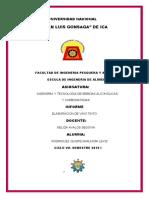 INFORME DE NELIDA (Autoguardado).docx