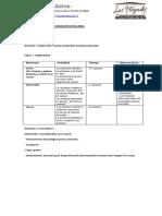 Planificación II semestre.docx