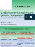 anaflavia_politicasdesaude3_14062012