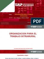 1 ORGANIZACION PARA EL TRABAJO INTRAMURAL, SCII