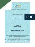 272531453-Trabajo-Colaborativo-1-Salud-Ocupacional-Consolidado.doc