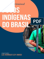 Justiça-Criminal-e-Povos-Indígenas-no-Brasil.pdf