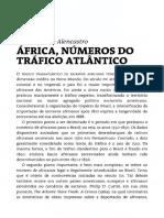 África, números do Tráfico Atlântico