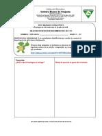 #13 TALLER DE REFUERZO-FORTALECIMIENTO DEL SER 15-07-20.docx
