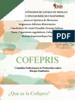 COFEPRIS y EFSA.pptx