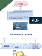 fotoquímica de la visión.pptx