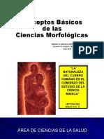 Conceptos Básicos de las ciencias morfologicas 1-2020