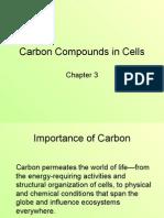 ch03 lecture(Carbon)[1]