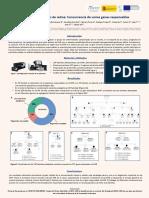 Poster_15_Ciberer_2020_GemaGarcia.pdf