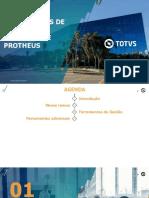 Apresentação webinar.pdf