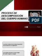 PROCESO DE DESCOMPOSICIÓN DEL CUERPO HUMANO