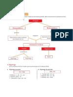 Concurrencia Vocalica.pdf
