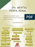 MAPA DE PERFIL RENAL