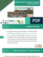 Programa Nacional da Triagem Neonatal 2020.pdf