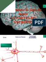 Partes_do_Neuronio