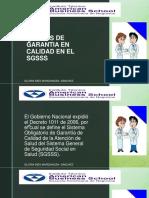 NORMAS SGSSS.pdf