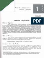Atributos-Diagnosticos.Outros-Atributos