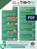 15-4 INFOGRAFIA Veterinarios y Covid (1).pdf