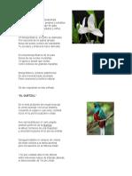poemas LA MONJA BLANCA.docx