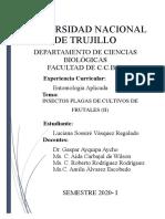 INFORME Nª8 - FRUTALES II