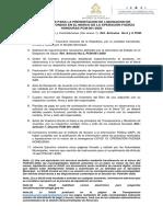 LINEAMIENTOS PARA LA PRESENTACION.pdf